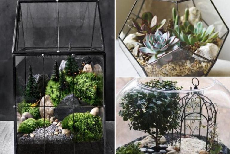 Mini-ogród w szkle – inspiracje na miniaturowe krajobrazy