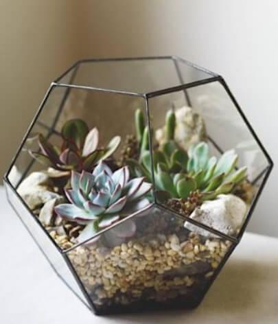 Mini-ogród w geometrycznym naczyniu