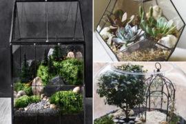 Mini-ogród w szkle